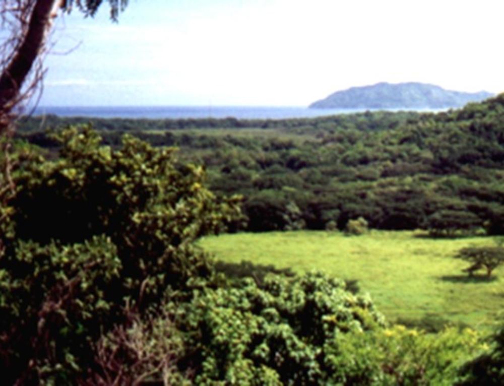 Costa Pinilla Master Plan