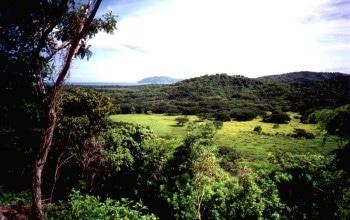 Costa Pinilla