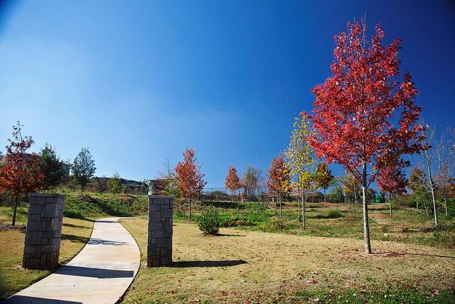 TSW Peoplestown-Parks-Master-Plan_007 Peoplestown Parks Master Plan    TSW
