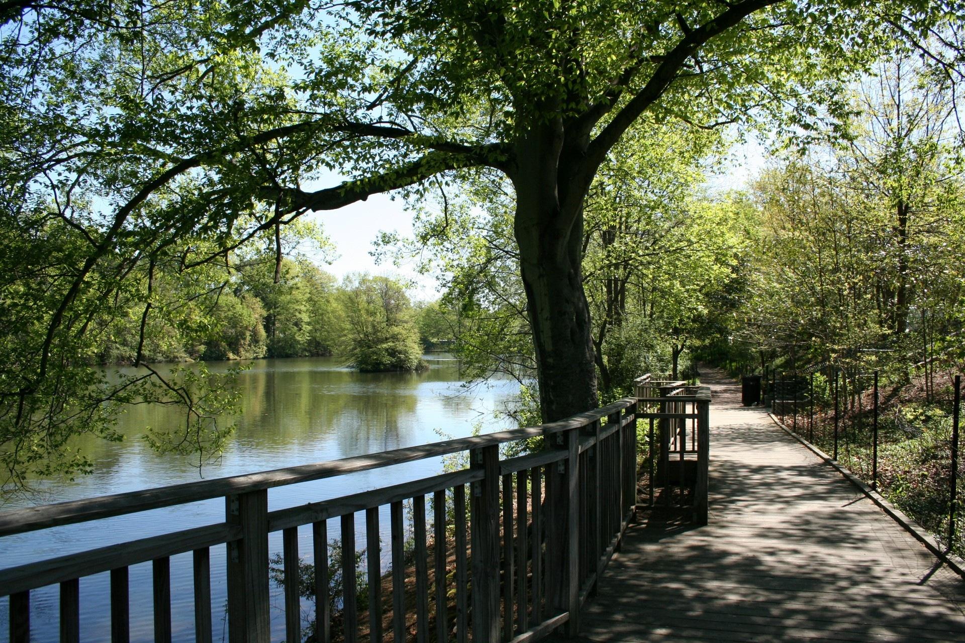 Piedmont Park Clara Meer Restoration
