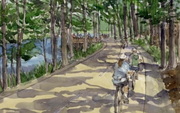Spalding County Rail with Trail Study
