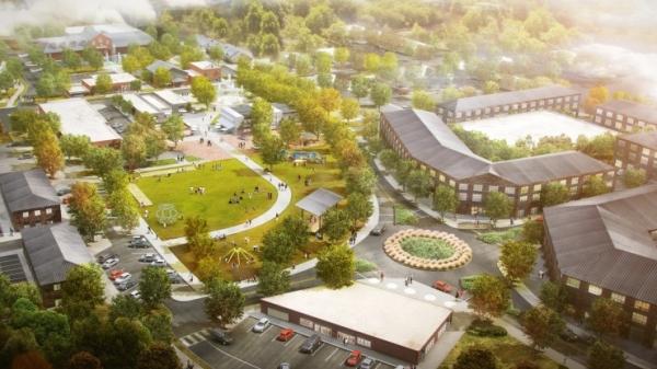Springs in Motion LCI Plan Update